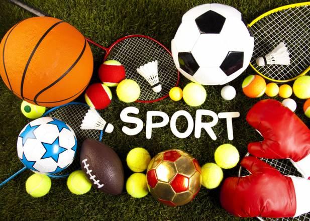 Dissertation sur le sport